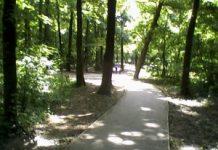 Banjička šuma rekreacija