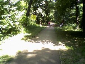 Banjička šuma - staza