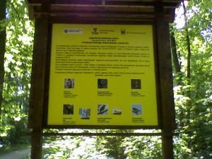 Tabla sa vrstama ptica, Banjička šuma