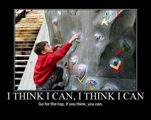 mogu ja to