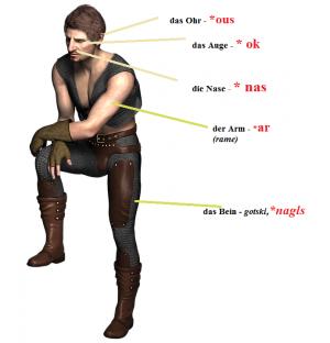 uvo uho značenje reči