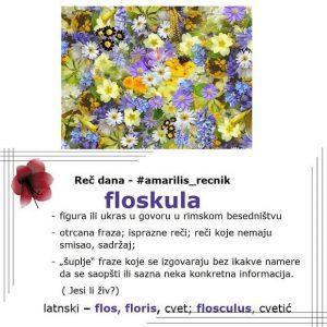 ambrozija floskula reči stranog porekla