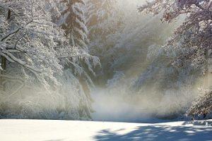 sneg značenje poreklo reči