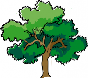 drvo značenje poreklo reči