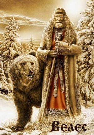 Veles medved