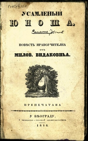 Usamljeni junoša, Milovan Vidaković, roman