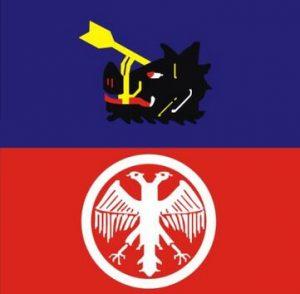 Velika Plana zastava