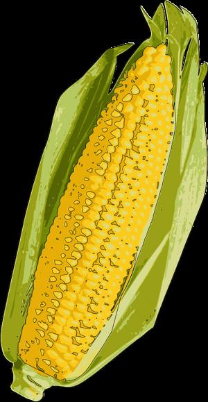 purenjak kukuruz značenje