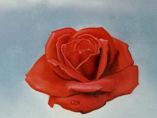bik horoskopski znak simbol ruža