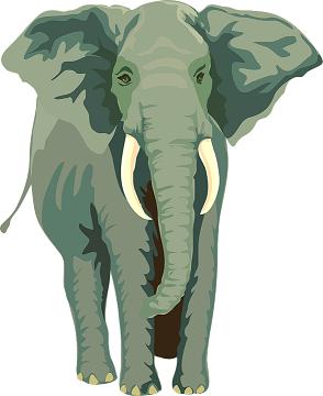 slon značenje reči