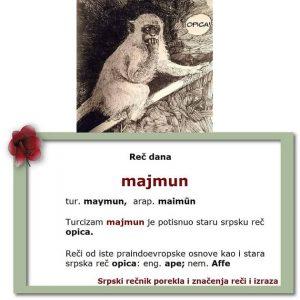 čmičak majmun opica srpski rečnik