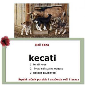 zapodevati kecati srpski rečnik